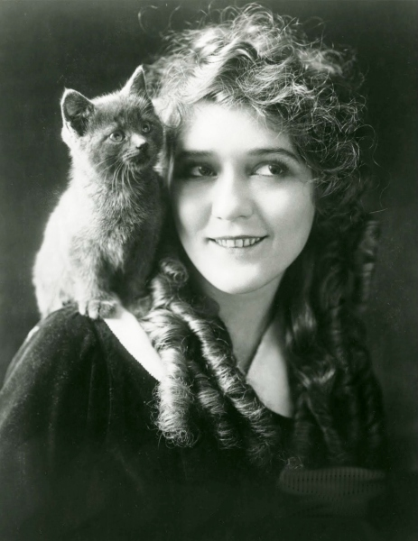 mary pickford katt