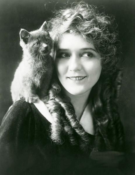 mary pickford katt